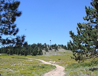 Mount Pinos - Summit of Mount Pinos in the summer, from the east southeast