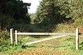 Plantation - geograph.org.uk - 253416.jpg