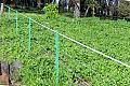 "Plastic electric fence post ""Fibopost"".JPG"