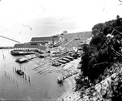 Point Roberts cannery ca. 1918