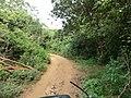 Polonnaruwa, Sri Lanka - panoramio (75).jpg