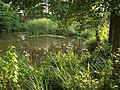 Pond, Charlie Ballard Nature Reserve - geograph.org.uk - 972061.jpg