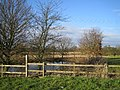 Pond Opposite Brailes Farm - geograph.org.uk - 98653.jpg