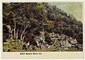 Postal. M. OP - Madeira. Ribeiro Frio.jpg