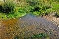 Potok Sázek u soutoku s Ohří v Nebanicích.jpg