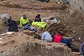 Pressekonferenz zu den archäologischen Grabungen am Rheinboulevard Köln-Deutz-5087.jpg