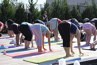 Yoga pants - Yoga pants are used in activities involving physical exercise