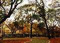 Prospect Heights Campus on a Fall Day.jpg
