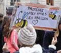 Protégez mes amies les abeilles.jpg