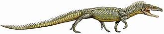 Archosauriformes - Image: Proterosuchus DB flipped