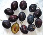 Prunus - Hauszwetschge.JPG