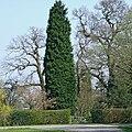 Public Footpath through Garden, near Wrottesley Hall - geograph.org.uk - 384593.jpg