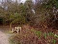 Quarry Moor (98).JPG