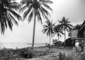 Queensland State Archives 1254 Green Island Great Barrier Reef 16 miles from Cairns c 1935.png