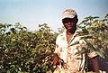 Récolte du coton à El Carmen - Pérou 08.JPG