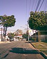 RUA MARTIN PERES - panoramio.jpg