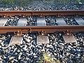 Rail MH 01 S 54.jpg