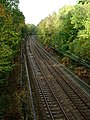 Railway Through Barrenley's Wood - geograph.org.uk - 72963.jpg