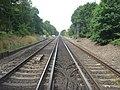 Railway to Headcorn - geograph.org.uk - 1420775.jpg