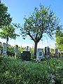 Rajac, staro seosko groblje 08.JPG
