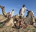 Rajasthan (6358502037).jpg