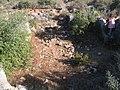 Ramat-ha-Nadiv-spring-trail-2033.jpg