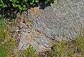 Reinischkogel Glimmerplättchen im Felsblock.jpg