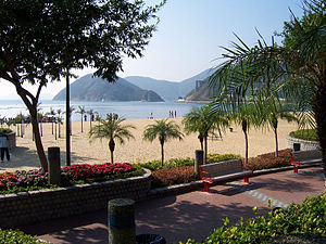 Repulse Bay palm trees