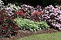 Rhododendronpark Bremen 20090513 131.JPG