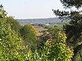 Ringoves piliakalnis 2008 04.jpg