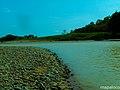 Rio Prinzapolka, vista aguas arriba. - panoramio.jpg