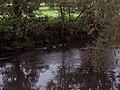 River Mells - geograph.org.uk - 504517.jpg
