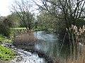 River Thame - geograph.org.uk - 158943.jpg