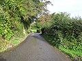 Road at Ardee - geograph.org.uk - 1018040.jpg