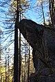 Rocher tenu par un arbre - Le Monêtier-les-Bains.jpg