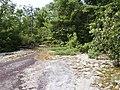 Rock outcrop at Carl Sandburg Home NHS June 2005 (a6537039-7bc4-48c3-b06b-93aa9e686787).jpg