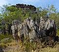 Rocks in all shapes Barrk Walk.jpg