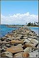 Rocks on Isla de Cabras, Puerto Rico.jpg