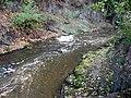 Rokytka pod Kyjským rybníkem.jpg