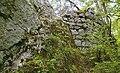Ruine-Fuerstenstein-Zugang.jpg