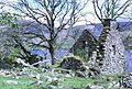 Ruined cottage.JPG