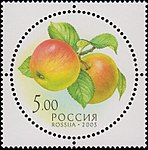 Russia stamp 2003 № 885.jpg