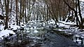 Söderåsen National Park thawing.jpg