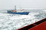 SG's Arctic Voyage -t.jpg