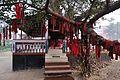 Sacred Seat - Nyakra Tala - NH-34 - Sargachi - Murshidabad 2014-11-29 0133.JPG