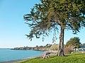 Saint-Jacut-de-la-Mer-plage-des-Haas-byRundvald.jpg