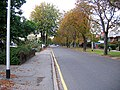 Saint Mary's Avenue - geograph.org.uk - 574323.jpg