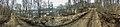 Salangsverket Reinforced concrete ruins of iron ore mining industrial plant (jernbrikettstøperi havn etc) 1907–1912 Langneset Salangen Troms Northern Norway Spring Naked trees Fence Harbour Sagfjorden etc Distorted panorama 2019-05-0.jpg