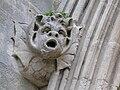 SalisburyCathedral Gargoyle2.JPG