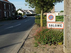 The road into Salomé